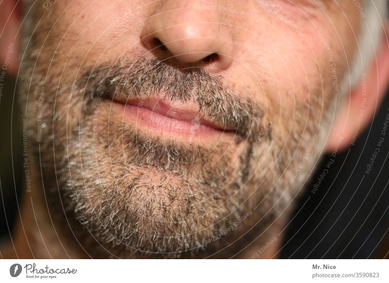 alt I er Bart maskulin Mund Lifestyle grau bärtig Behaarung Pflege Dreitagebart grauhaarig Mann Gesicht Lippen Vollbart Nase Nasenspitze Kinn Haut Alterung