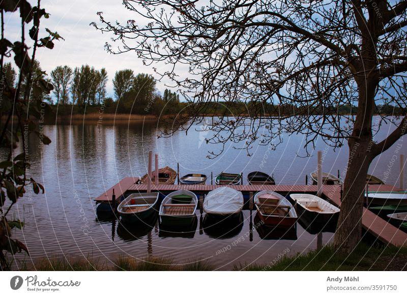 einsam liegen die Boote am Steg Wasser wandern Wald Sommer Spaziergang Außenaufnahme nikon Landschaft Fotografie Himmel Bäume Sonntag Ausflug See schön ruhig