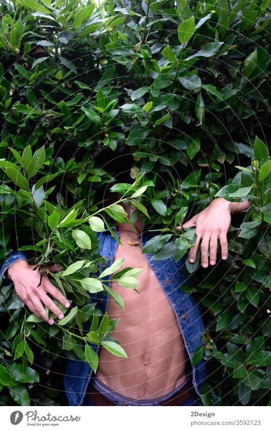 Ein junger Mann im grünen Gebüsch versteckt 1 Tierhaut Dschungel Blatt Person Natur Menschen unsichtbar Pflanze Model absurd Tarnung Baum anonym Teenager