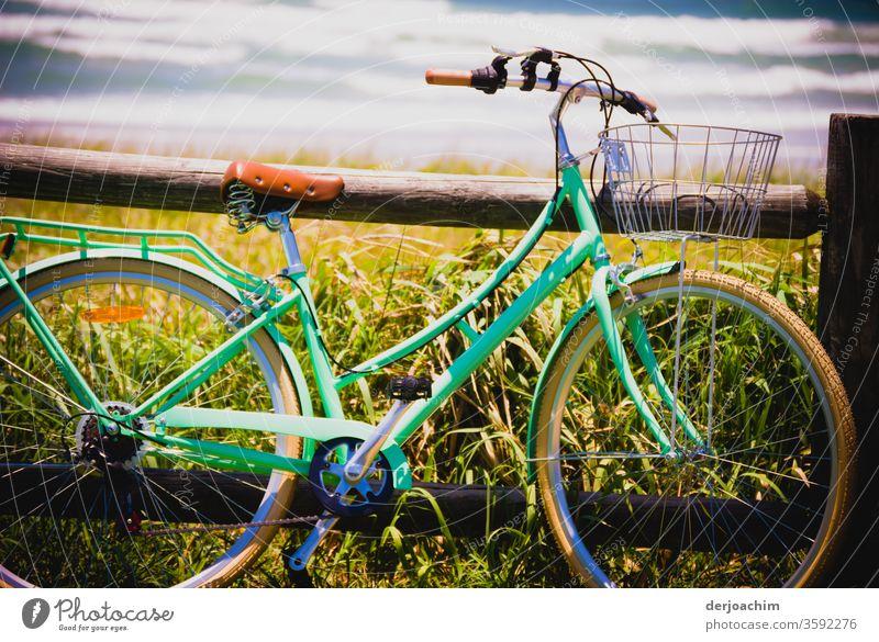 Ein  Damen -Fahrrad angelehnt am Holzbalken.Frisches Ufergrün mit Hintergrund das Meer. Bewegung Außenaufnahme Farbfoto Tag Freizeit & Hobby Menschenleer