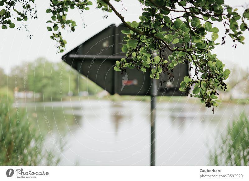 Da lang - richtungsweisendes Schild hinter Zweigen am Ufer der Havel bei Oranienburg Richtung Pfeil Fluss Schilf Wasser Spiegelung grün links Idylle
