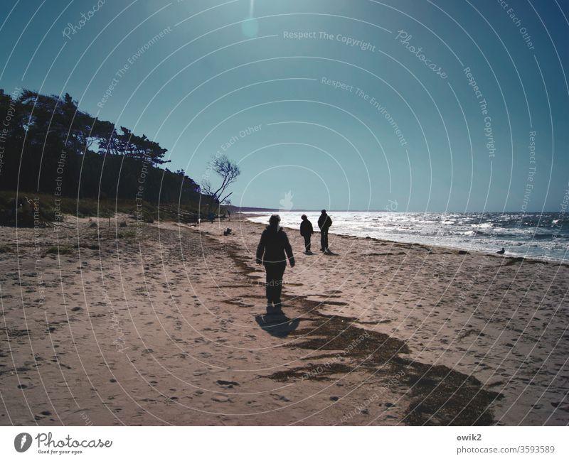 Voraustrupp Ausflug Ferne Freiheit Mensch wandern Umwelt Natur Landschaft Horizont Wolken Himmel Wasser Sand Schönes Wetter Wind Küste Ostsee Außenaufnahme