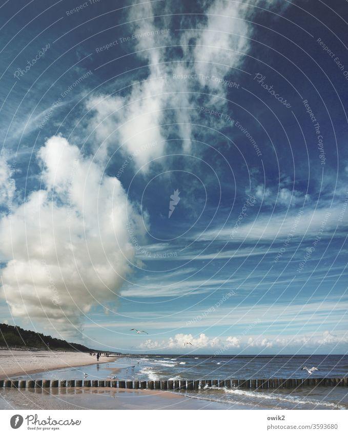 Polnische Ostsee Polen Küste maritim Himmel Wolken Urelemente Luft Wasser Wellen Weite Sand Sandstrand Idylle blau weiß Landschaft einsam Umwelt Horizont Meer