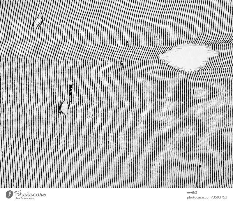 Textur Muster Struktur Linien schwarz weiß parallel viele unklar rätselhaft dünn Ordnung einheitlich Strukturen & Formen abstrakt Menschenleer Detailaufnahme