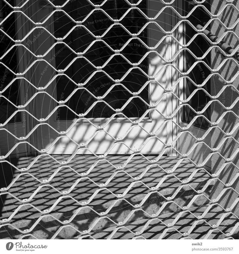 Einfassung Gitter Architektur Zaun Licht Makroaufnahme Dinge Außenaufnahme Barriere Metall Strukturen & Formen Schutz Muster Verbote Mauer Kontrolle Tag
