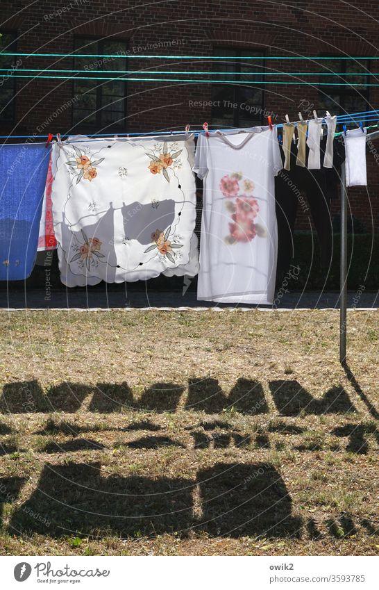 Waschtag Wäsche Textilien hängen Wäscheleine Wiese Schatten Wäscheklammern Tischdecke Socken Nachthemd Kontrast Sonnenlicht trocknen Sauberkeit Farbfoto