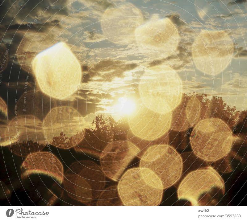 Funkenflug Wassertropfen Fensterscheibe geheimnisvoll Sonne Sonnenlicht leuchtend strahlend Gegenlicht Lichterscheinung Ausblick Bäume Himmel Wolken nass Regen