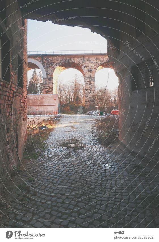 Tunnelblick Durchgang Ruine Abrissgebäude Durchblick Viadukt Sträucher trashig verlassen Kopfsteinpflaster Mauer düster gefährlich Bronx Wand Farbfoto