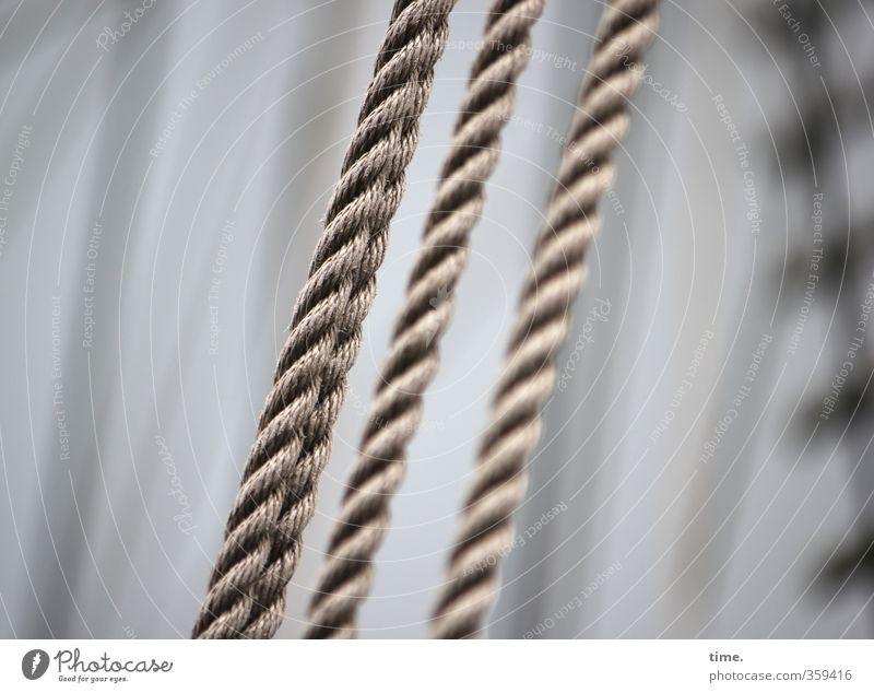 in den Seilen Schifffahrt Segelschiff festhalten elegant muskulös stark Verantwortung achtsam Wachsamkeit gewissenhaft Partnerschaft Design Entschlossenheit