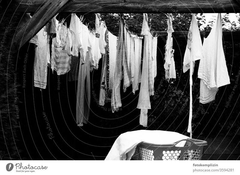 Pergola mit Wäscheleine und Korb Haushalt Wäsche waschen Sauberkeit trocknen Haushaltsführung Waschtag aufhängen Häusliches Leben Bekleidung Alltagsfotografie