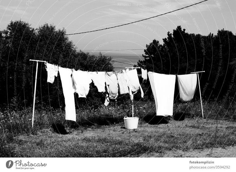Wäscheleine im Garten mit Korb Haushalt Wäsche waschen Sauberkeit trocknen Haushaltsführung Waschtag aufhängen Häusliches Leben Bekleidung Alltagsfotografie