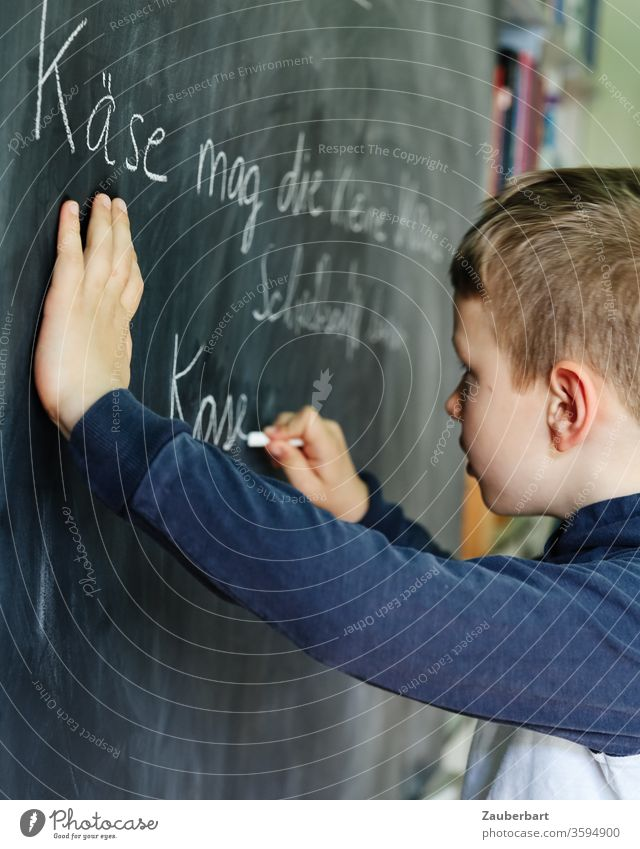 Homeschooling V - Junge schreibt mit Kreide auf eine Tafel einen Übungssatz für Schreibschrift Schule Schülerin Grundschule Bücher Regal Bücherwand Jeans grün