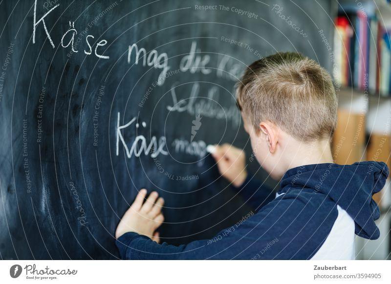 Homeschooling III - Junge schreibt mit Kreide auf eine Tafel einen Übungssatz für Schreibschrift, im Hintergrund Bücherregal Schule Schülerin Grundschule Regal