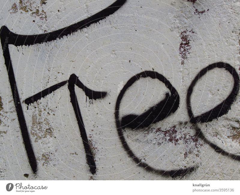 Free Graffiti free frei Freiheit Außenaufnahme Wand Buchstaben Wort Schriftzeichen Typographie Schmiererei Straßenkunst Text Kunst Handschrift Letter Sprache
