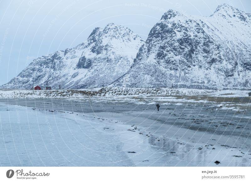 Ein Mann steht am Strand vor verschneiten Bergen Lofoten Norwegen Skandinavien Winter Berge u. Gebirge Schnee Spiegelung Winterlandschaft blau
