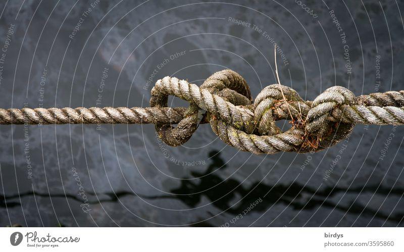Knoten in einem Hanfseil über Wasser. Seemannsknoten Seefahrt Seil Schifffahrt verwittert festmachen verknoten maritim Hafen Menschenleer Wasseroberfläche