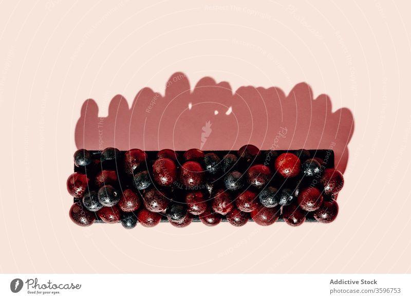 Schokoladentorte mit frischen Trauben Pasteten Frucht Kuchen Dessert reif lecker Bäckerei appetitlich Vitamin Lebensmittel geschmackvoll organisch süß
