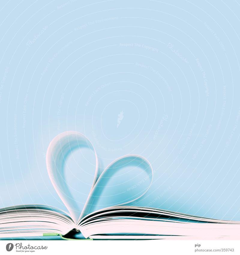 liebesroman blau Liebe offen Buch Herz lernen Papier lesen Leidenschaft Buchseite Literatur Roman herzförmig aufgeschlagen Belletristik blättern