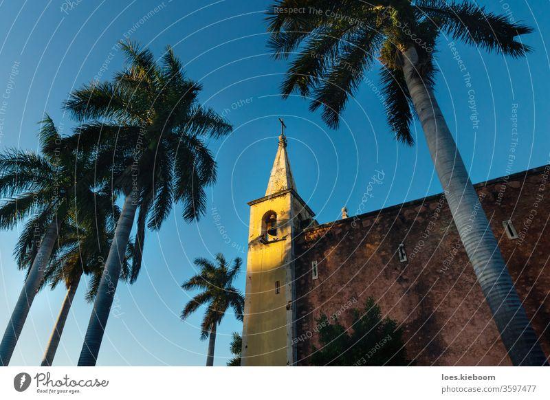 Glockenturm der Kirche Santa Ana, eingerahmt von Palmen bei Sonnenuntergang, Merida, Yucatan, Mexiko Mérida Wahrzeichen amerika reisen kolonial gelb Turm