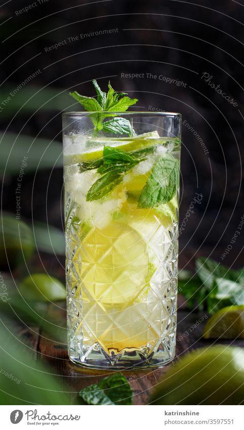 Hausgemachter erfrischender Mojito-Cocktail in einem hohen Glas Mocktail Minze Kalk Caipiroska Caipirinha Limonade Getränk trinken Blatt Alkohol dunkel
