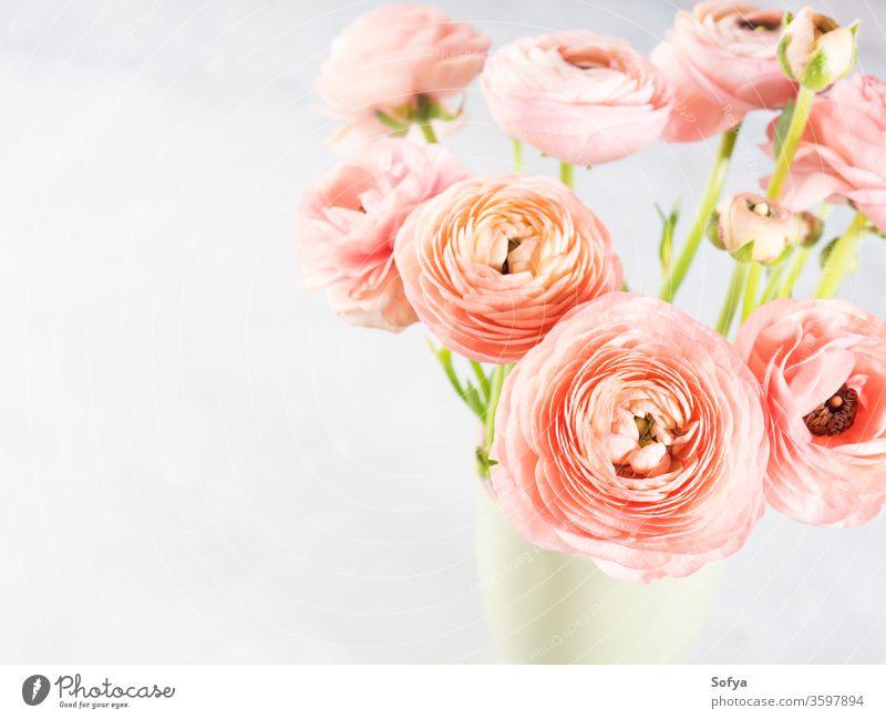 Wunderschöner rosa Hahnenfuß-Strauß Blumenstrauß Ranunculus Frühling Grußkarte Blüte Geschenk Natur Jahrestag Haufen Dekoration & Verzierung geblümt Liebe grün