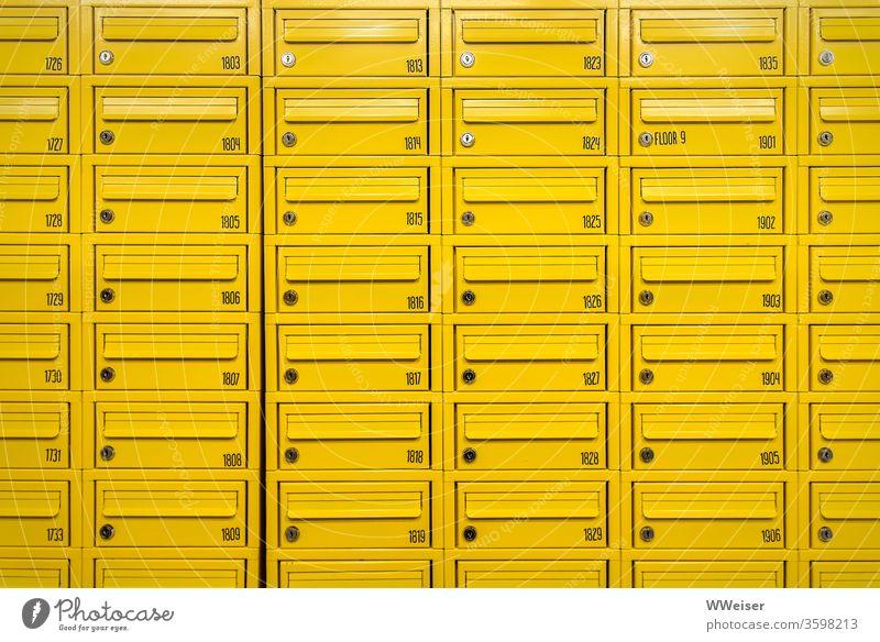 Viele gelbe Briefkästen, nummeriert Briefkasten Metall Reihen Schlitze Briefschlitz Nummern Wohnheim Studentenwohnheim Stockwerk Etage Schlüsselloch öffnen