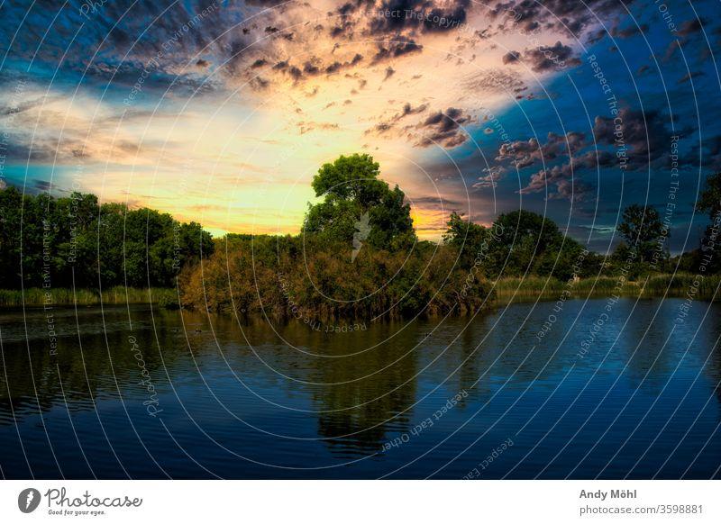 Abendspaziergang am See Wasser Sonnenuntergang Farbe Bäume Reflexion & Spiegelung Wolken Landschaft Farbfoto Menschenleer ruhig Natur Sommer Idylle