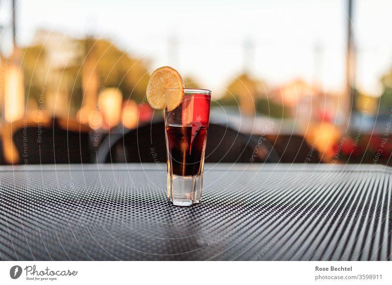 Kräuterlikör mit Zitronenscheibe Aperitif Alkohol Getränk Glas Cocktail Farbfoto Sommer Likör Bar Schnaps Abenddämmerung Abendstimmung alkoholisch Aroma