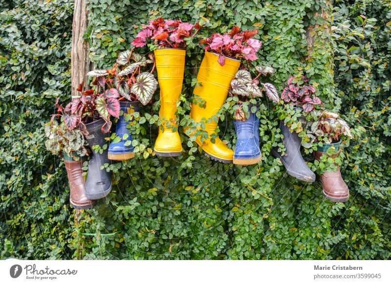 Recycling und Wiederverwendung von Regenstiefeln, Ideen zur Reduzierung von Abfall und Umweltverschmutzung zur Feier des Earth Day Umweltschutz