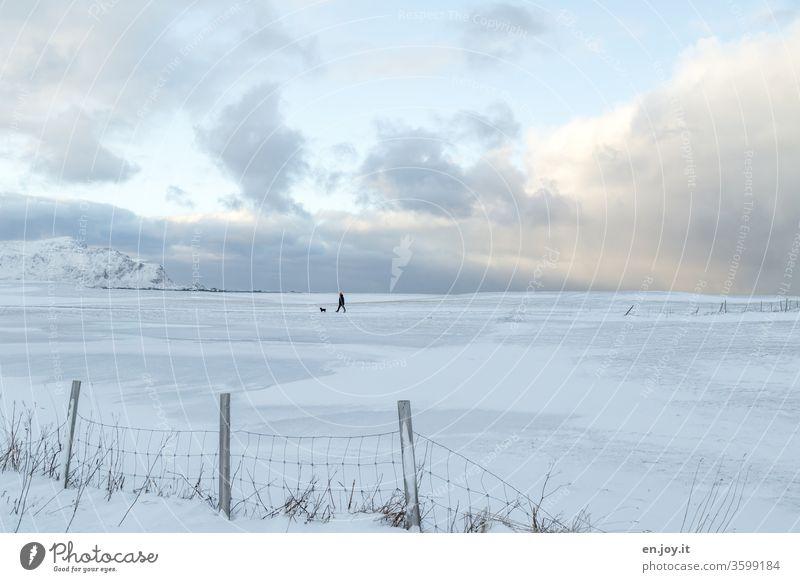 Mann mit Hund geht in Winterlandschaft über Felder mit Schnee spazieren, eingezäunt von einem Zaun Norden Norwegen Skandinavien Lofoten Weite Horizont
