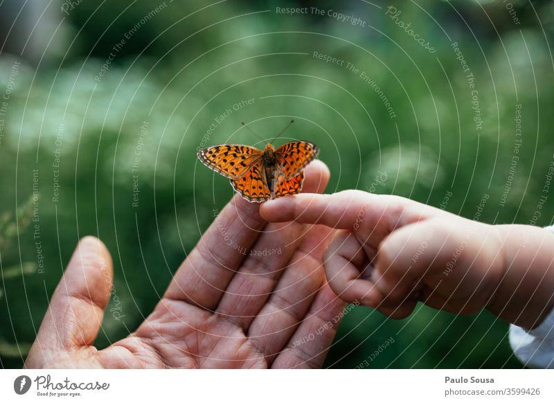 Nahaufnahme der Hände mit Schmetterling Vater Vater mit Kind Familie & Verwandtschaft natürlich Natur Hand Kindheit Mensch Erwachsene Mädchen Kleinkind Liebe