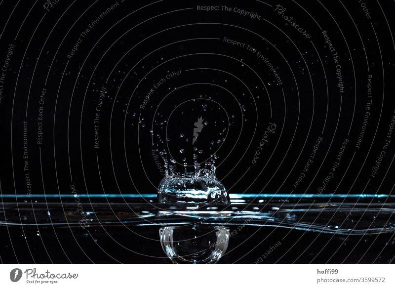 Wassertropen fallen und lassen Figuren entstehen nass Tropfen Wassertropfen blau Wellen Wasseroberfläche Blitzlichtaufnahme schwebend schwarz Schweben