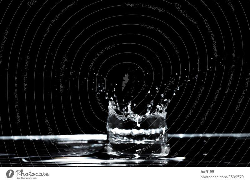Wassertropen fallen und lassen Figuren entstehen Wasseroberfläche Wellen blau Wassertropfen Blitzlichtaufnahme schwebend Schweben schwarz Lichtbrechung