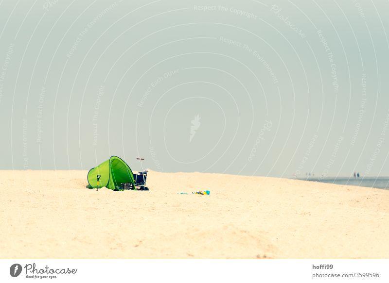 Einsamer Sandstrand mit grüne Strandmuschel - die anderen kommen noch ... Windschutz Stranddüne Sommer Sommerurlaub Nordseestrand Ostseestrand Insel