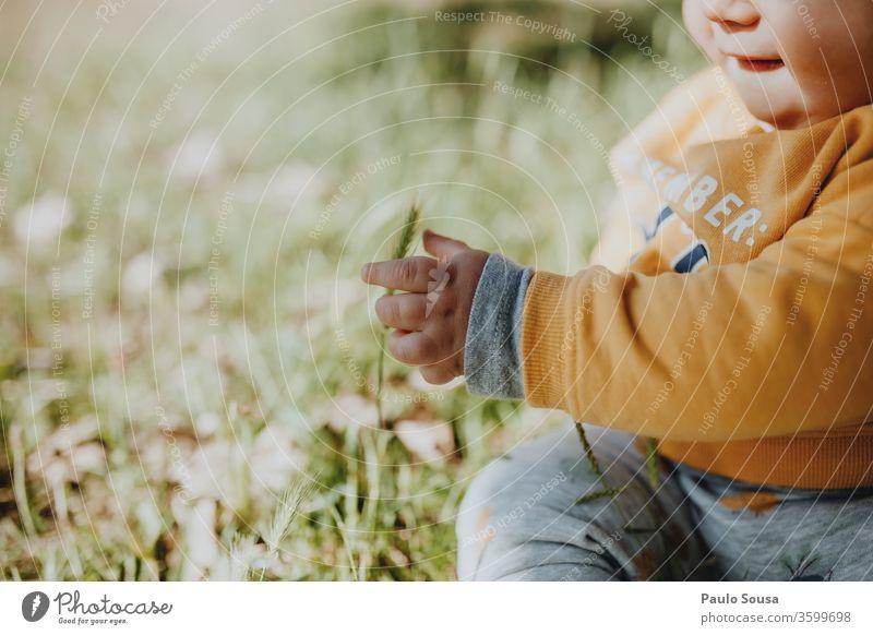 Mit Gras spielendes Kind Baby Säuglingsalter Kleinkind 0-12 Monate Kaukasier Sommer Frühling Farbfoto Mensch Kindheit schön niedlich Glück Außenaufnahme