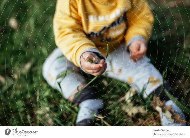 Kleinkind sitzt auf Gras Baby Kind Kindheit Neugier unschuldig entdecken Farbfoto Mensch Außenaufnahme 0-12 Monate Fröhlichkeit Natur 1-3 Jahre Freude Leben