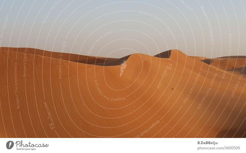 Vom Wind geformte Wellen in der omanischen Wüste. Berge Oman Reisen Ferien & Urlaub & Reisen Himmel Sand Natur Tag Landschaft heiß trocken Farbfoto Düne Safari