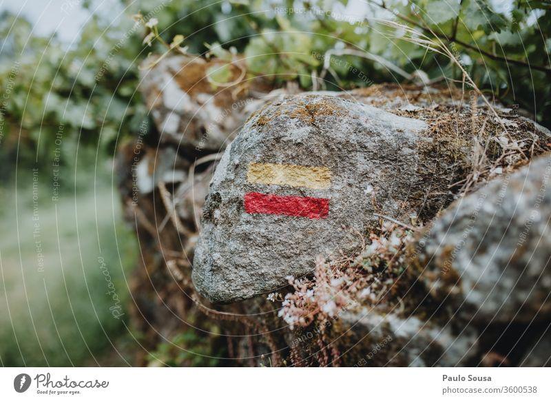 Wanderweg-Schild am Felsen wandern Wanderausflug Wegmarkierung Wanderzeichen Zeichen Ferien & Urlaub & Reisen Farbfoto Natur Berge u. Gebirge Außenaufnahme