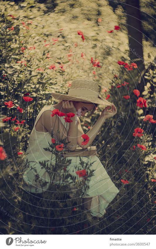 Frau mit Buch im Mohn lesen mohnblumen Sommer Blume Bildung schön Mohnblumen Natur Farbfoto rot Literatur