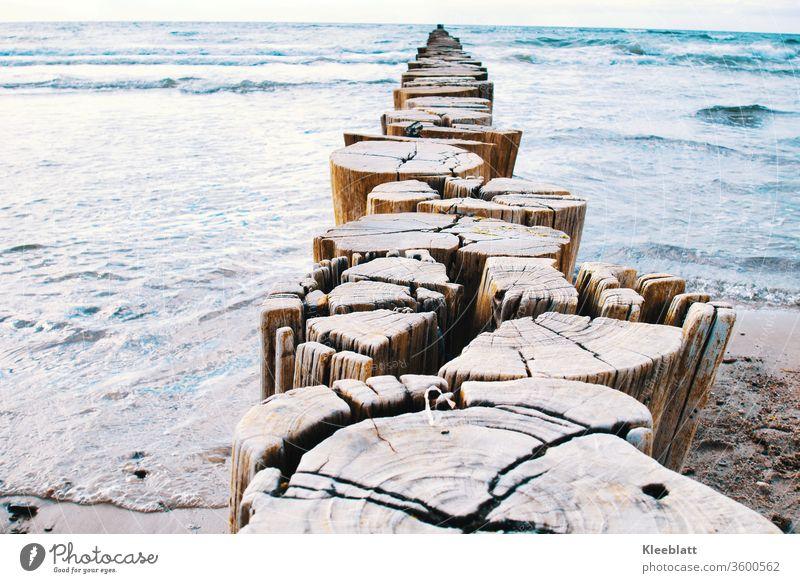 Buhnen -  Wellenbrecher zum Küstenschutz in der Mitte des Bildes in den Farben Silberblau und Beigetönen Strand Wasser Meereslandschaft Menschenleer Himmel