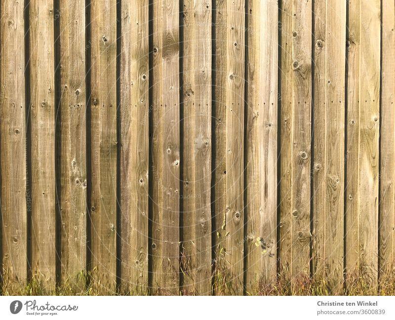 alt I Hellbraune Bretterwand mit kleinen trockenen Gräsern davor Holzwand Wand Strukturen & Formen Muster Hintergrundbild Fassade Nahaufnahme Linie