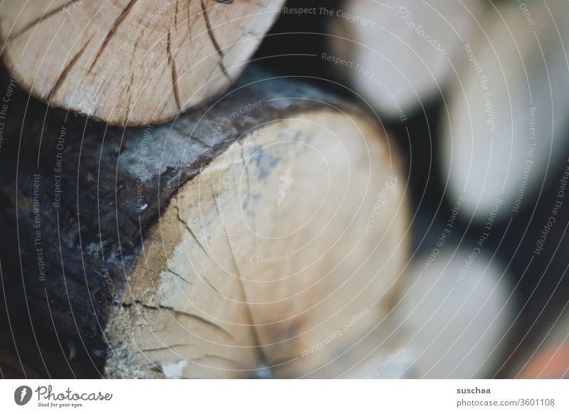 holz Holz Baum Baumstamm Holzstapel Brennholz Winter Vorrat Forstwirtschaft Wald rund Risse Nutzholz geschnitten Rodung nachhaltig Brennmaterial Baumrinde