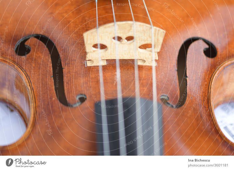 Eine Geige von oben  und sehr nah fotografiert. Man sieht der Steg, die F Löcher, ein Teil der Metall Seiten, ein Teil des Korpus aus hellem Holz und ein Teil des schwarzen Griffbretts des Instruments.