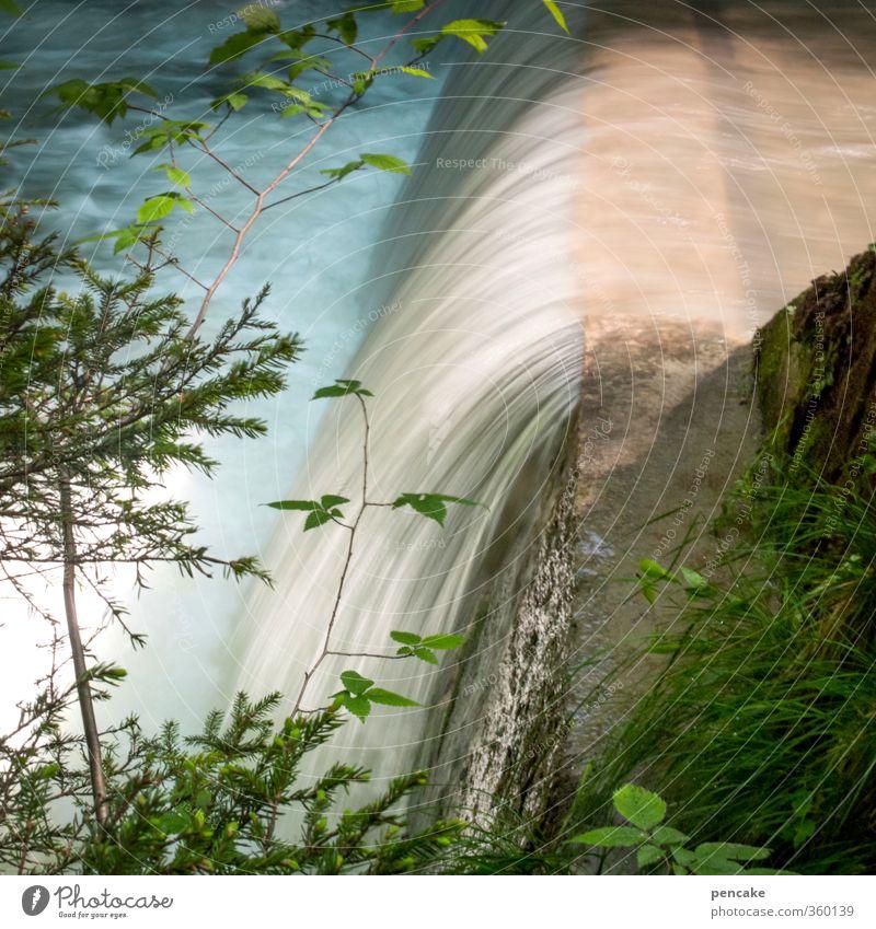 AST6 Inntal | stufenwasser Natur Landschaft Pflanze Urelemente Wasser Sommer Schönes Wetter Wald Alpen Berge u. Gebirge Wellen Bach Wasserfall Stein Beton