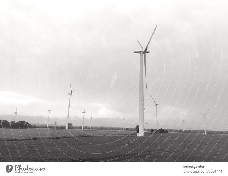 Erzeuger. Wind Windrad Windrichtung Windkraftanlage Energiewirtschaft Außenaufnahme Erneuerbare Energie Himmel Elektrizität Umwelt Umweltschutz