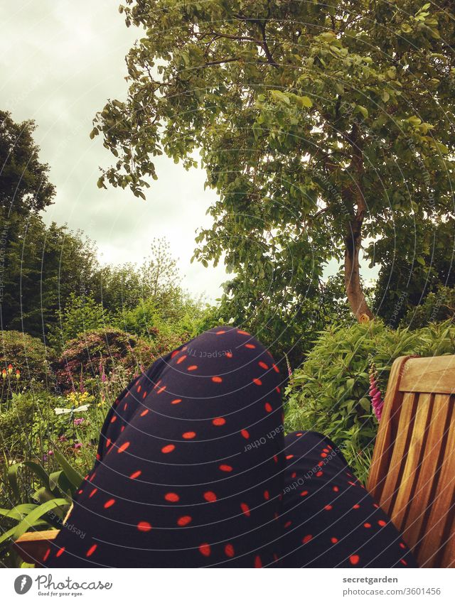 Dösender Siebenschläfer Beine Bank Pünktchen Natur Baum Garten Gartenbank Farbfoto Außenaufnahme Tag Holz sitzen liegen entspannend Park Erholung Pause grün