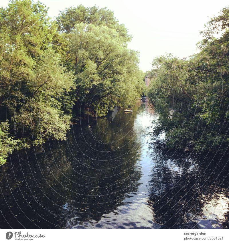 Stille Wasser sind tief und unergründlich, sagt man... Fleet Kanal Fluss Hamburg Reflexion & Spiegelung Sommer nass Bäume Uferlinie blau Urwald dicht bewachsen