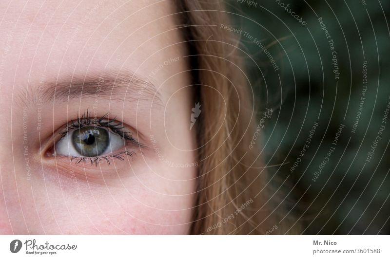guckst du Blick in die Kamera Porträt Augenbraue natürlich Frau feminin Gesicht Kopf selbstbewußt Warmherzigkeit Gesichtsausdruck schön Gesichtsausschnitt sehen