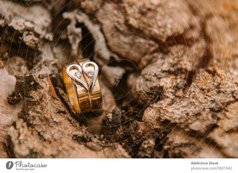 Trauringe auf Holzoberfläche Hochzeit Ring Festakt golden Heirat Liebe feiern Herz Form Veranstaltung Symbol romantisch Tradition Engagement elegant Schmuck