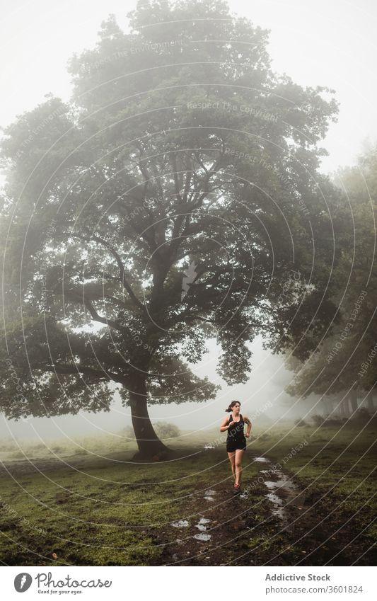 Fitte Frau rennt auf einem Pfad in nebligem Wald laufen Sportlerin Läufer passen Athlet Holz Training Morgen Sportbekleidung nass Weg Gesundheit Fitness dreckig